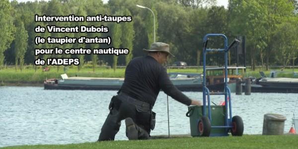 expert_anti_taupe_belgique_france
